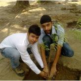 Plantation – 03 July 2010
