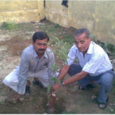 Plantation – 01 Aug 2011