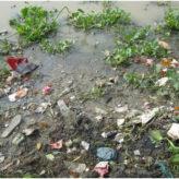 Clean Gomti Campaign – 19 July 2011